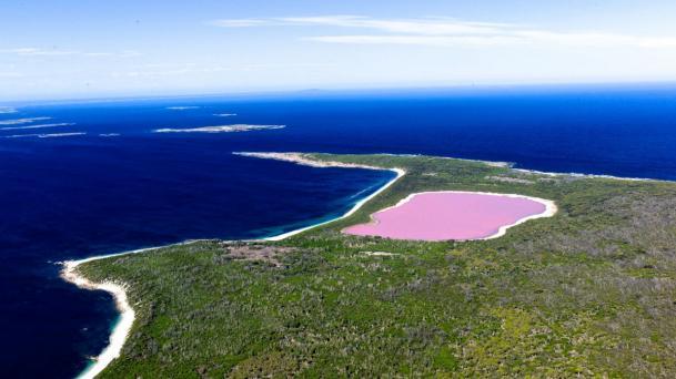 http://www.australia.com/fr-fr/places/wa/pink-lake.html