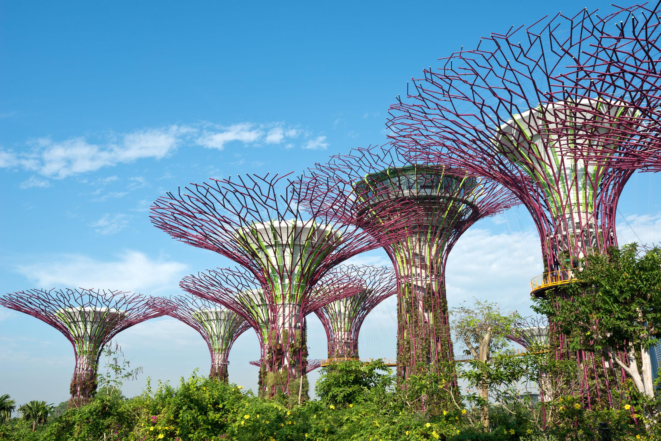 سنغافورة  الحدائق على الخليج